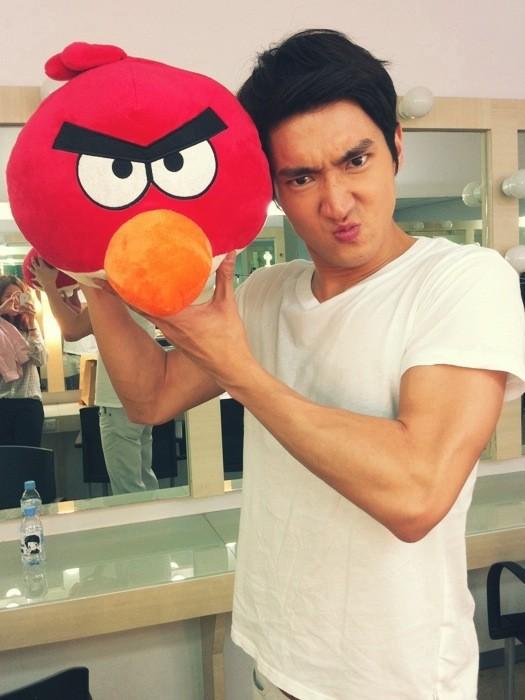 choi siwon look alike angry bird