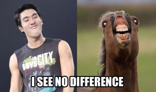 choi siwon look alike lama