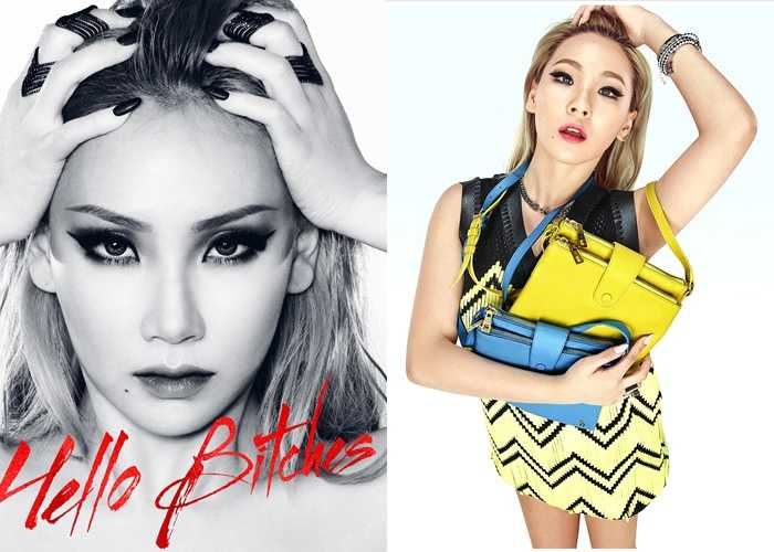 CL 2ne1 language genius idols