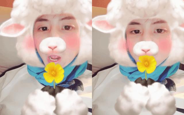 kpop idols, kpop snow, snow cam, kpop snow app, kpop idols snow app, kpop idols face filters, yoseob 2016, yoseob snow app
