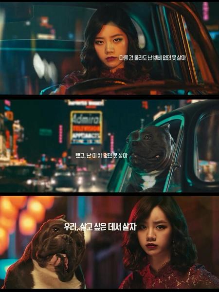 Most Popular K-Pop Idol Ad Models of July 2016
