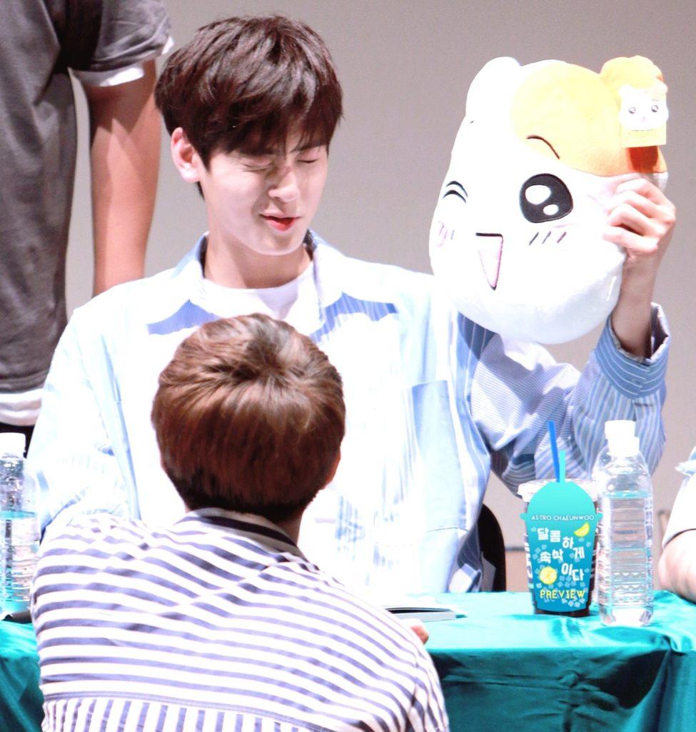 kpop, kpop idols, kpop dolls, kpop idols characters, kpop idol character, kpop idol character dolls, cha eun woo