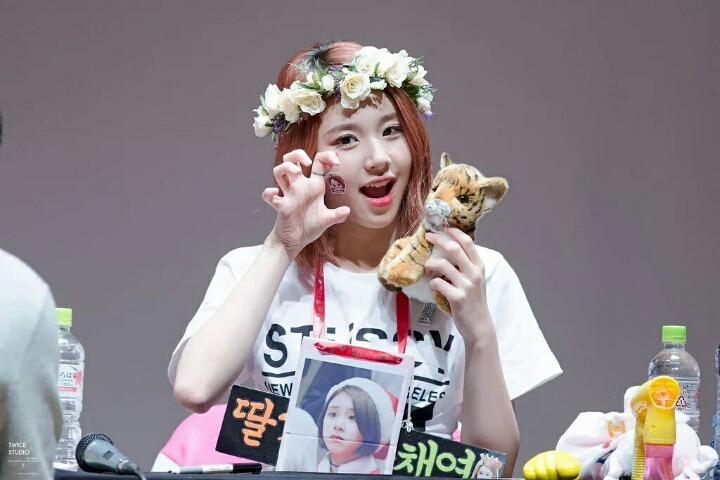 kpop, kpop idols, kpop dolls, kpop idols characters, kpop idol character, kpop idol character dolls, chaeyoung doll