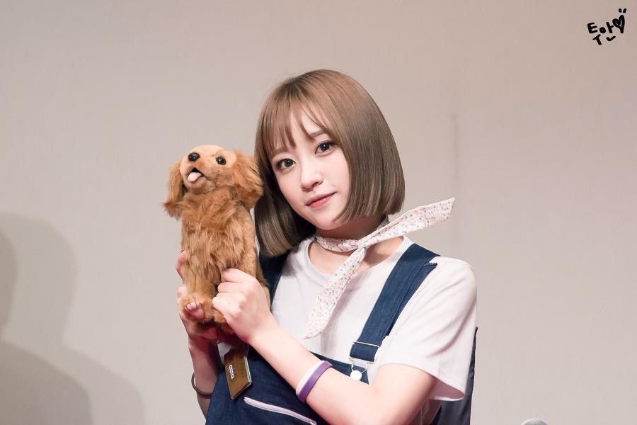 kpop, kpop idols, kpop dolls, kpop idols characters, kpop idol character, kpop idol character dolls, hani doll