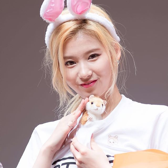 kpop, kpop idols, kpop dolls, kpop idols characters, kpop idol character, kpop idol character dolls, sana doll