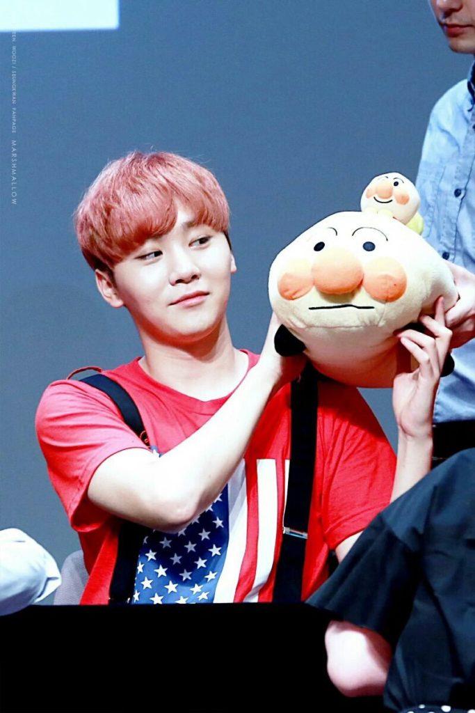 kpop, kpop idols, kpop dolls, kpop idols characters, kpop idol character, kpop idol character dolls, seungkwan doll