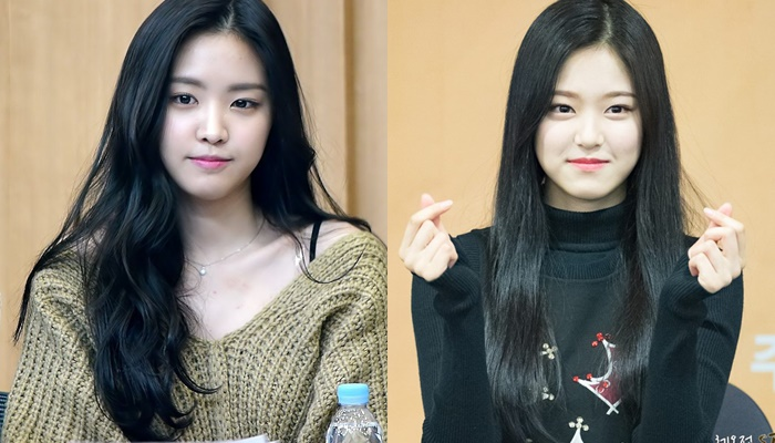 Possible K-Pop Idol Sisters Who Need To Get Their DNA Tested