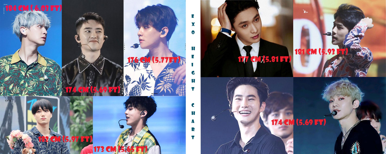 EXO,EXO Height Chart, SuHo, Chen, Kai, Xiumin, ChanYeol, Lay, DO, SeHun, BaekHyun