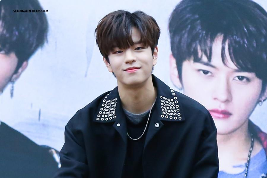 Stray Kids Members' Height, From Tallest to Shortest
