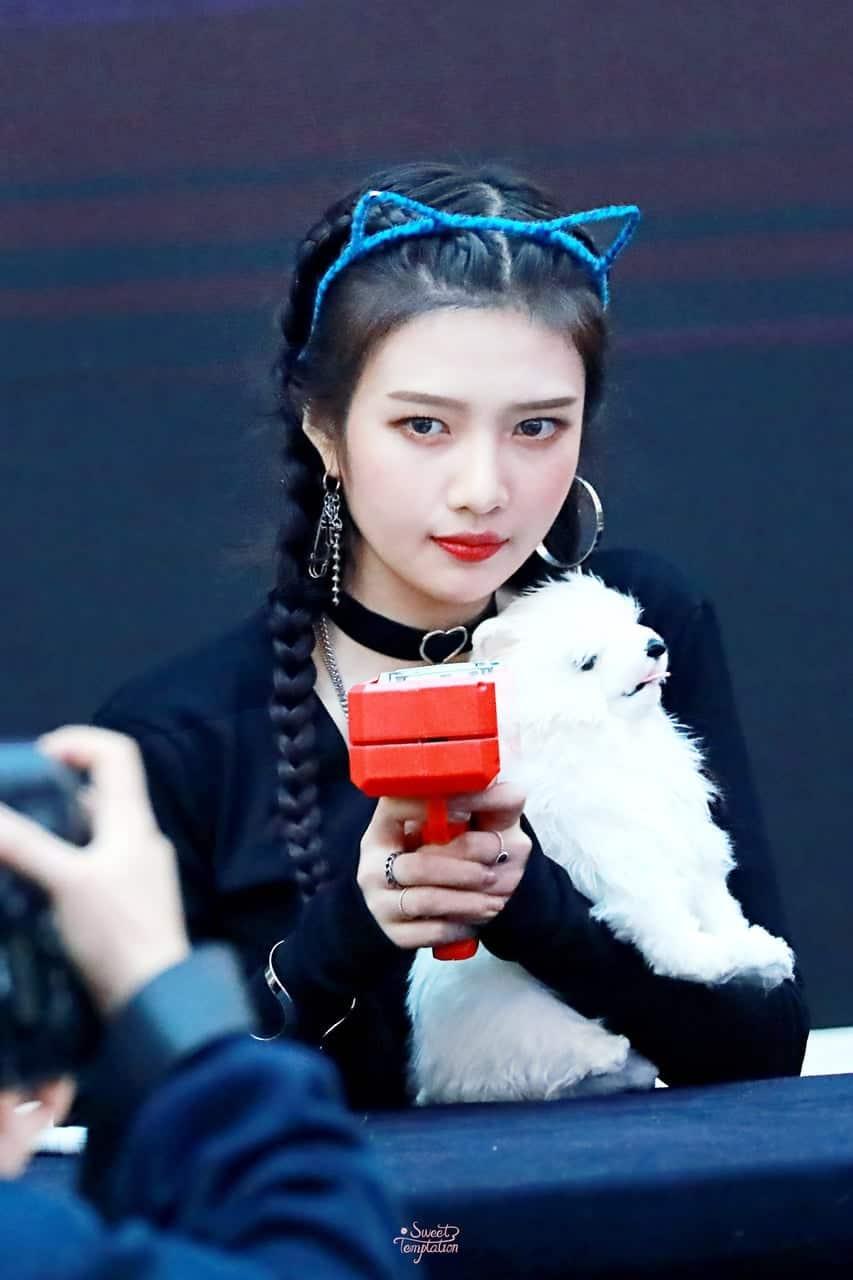 K-Pop Idols Having Fun With The Ever So Amusing Money Gun