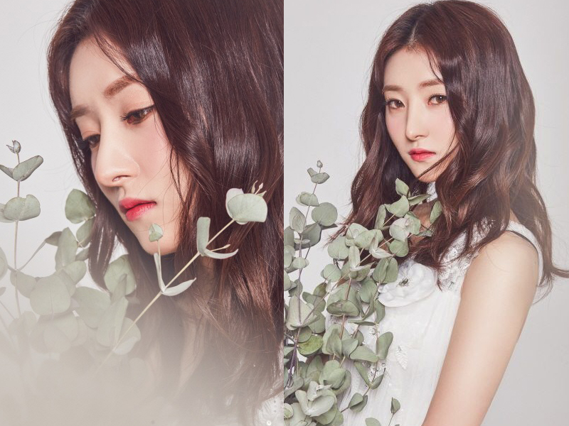 6 Female K-Pop Idols You Would Want To See Cherry Blossoms With