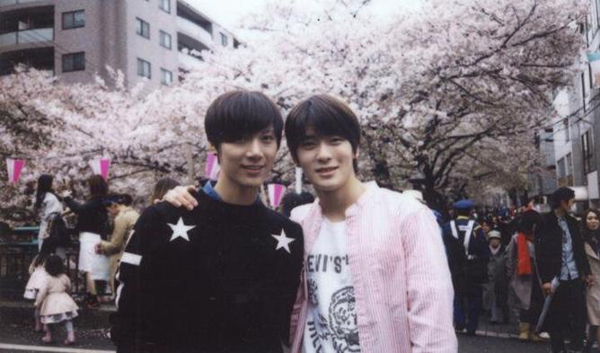 nct, nct jaehyun, cherry blossoms, kpop idols cherry blossoms