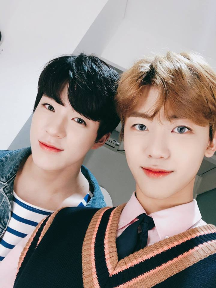 nct, nct dream, nct jeno, nct jaemin, jeno, jaemin, nct profile, nct members, nct facts, nct height, nct age, nct youngest, nct tallest