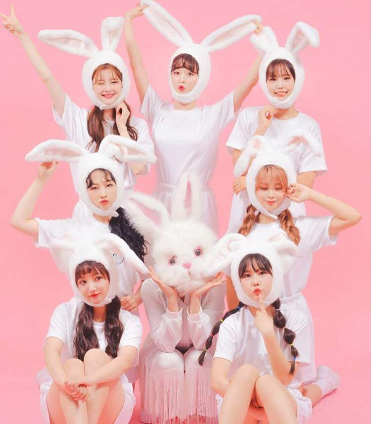 Pink Fantasy's 'Daewang' To Take Off Bunny Mask If They Reach No.1 On Billboard?