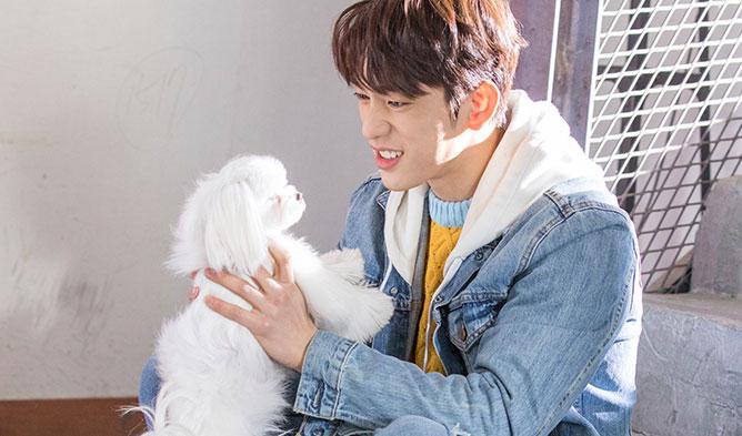jinyoung he is psychometric guy, jinyoung drama 2019, got7 jinyoung, jinyoung psychometric, jinyoung tvn, he is psychometric drama