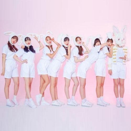 pink fantasy, pink fantasy kpop, pink fantasy members, pink fantasy profile, pink fantasy group