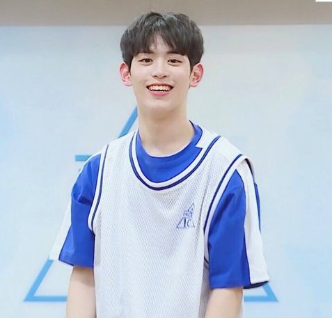 Netizens Talk About 11 Produce X 101 Trainees Most Likely To Win & Debut