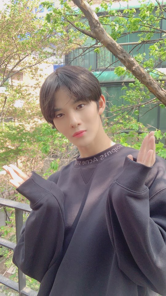 Bae JinYoung Sent A Hilarious Message To AB6IX With Congratulatory Flowers