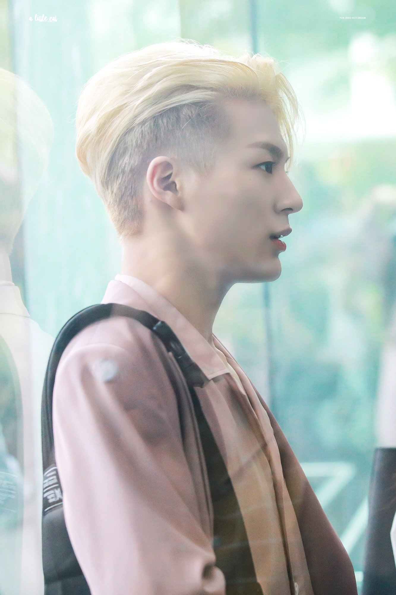 nct, nct profile, nct facts, nct height, nct weight, nct age, nct leader, nct facts, nct 127, nct dream, nct u, nct jeno, jeno