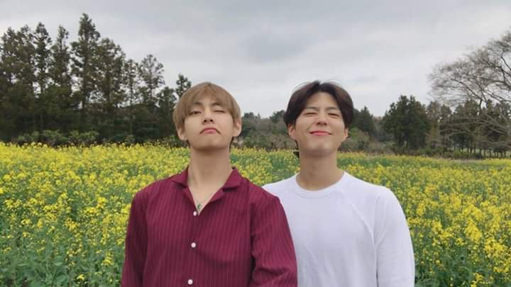 Park BoGum Reveals He Had Learned 'Boy With Luv' Choreography From BTS's V