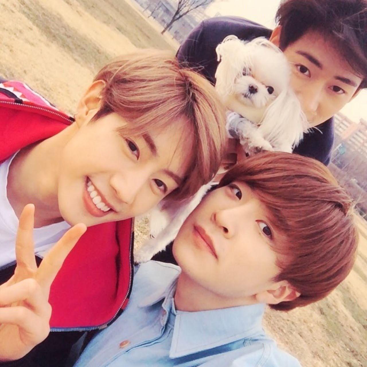 kpop idol dogs