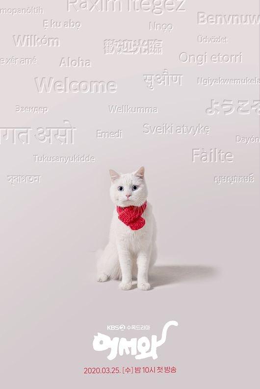 """Meow, The Secret Boy"" (2020 Drama): Cast & Summary"