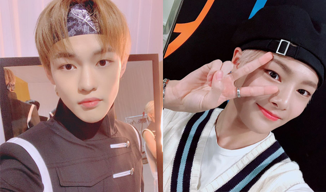 stray kids, stray kids profile, stray kids leader, stray kids age, stray kids height, stray kids facts, stray kids age, stray kids jeongin, stray kids in,