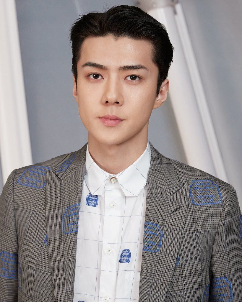 EXO SeHun's Louis Vuitton Suit Is Probably The Best Outfit You'll See This Year