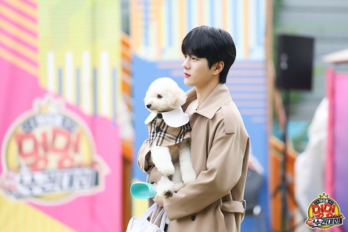 Netizens Notice How Golden Child's JaeHyun And BoMin Pet Dogs Resemble Them