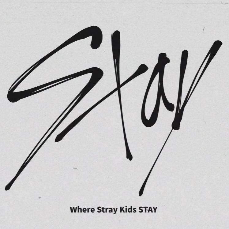 Where_stray_kids_stay.jpg