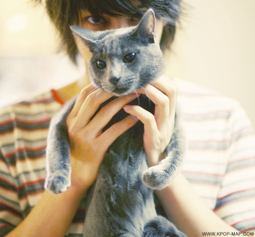 10 Things You May Know Idol Pets and Their Famous Parents