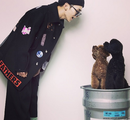 shinee-key-pet.jpg